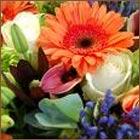 Reliable Florists